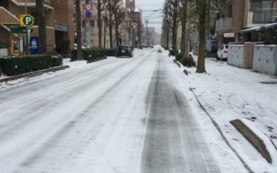 やすらぎ通りの雪景色